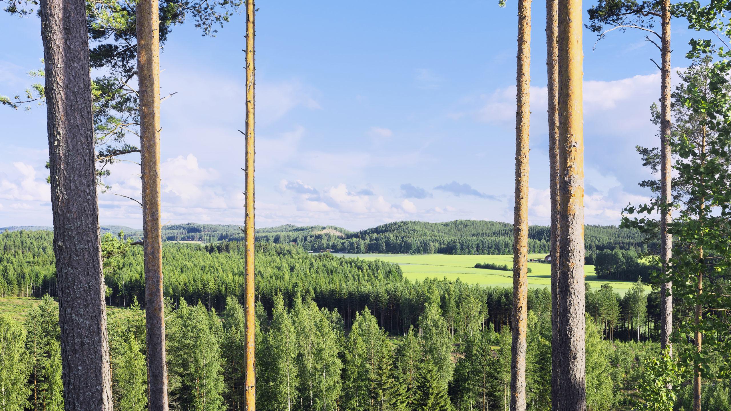 Kiertokapula Järvenpää